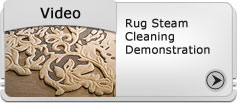 video-rug-steam-cleaning-demonstration